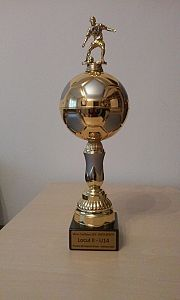 minifotbal Viitorul Sf Gheorghe (4)