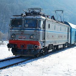 4feb2010-tren