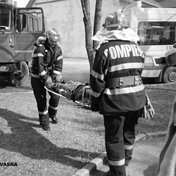 04mar2010-pompieri