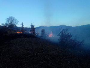 Incendiu vegetatie martie 2016 - 2