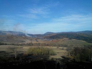 Incendiu vegetatie martie 2016 - 3