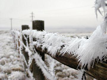 ger frig vreme