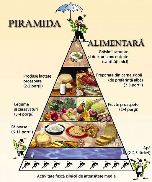 piramida alimentara 2