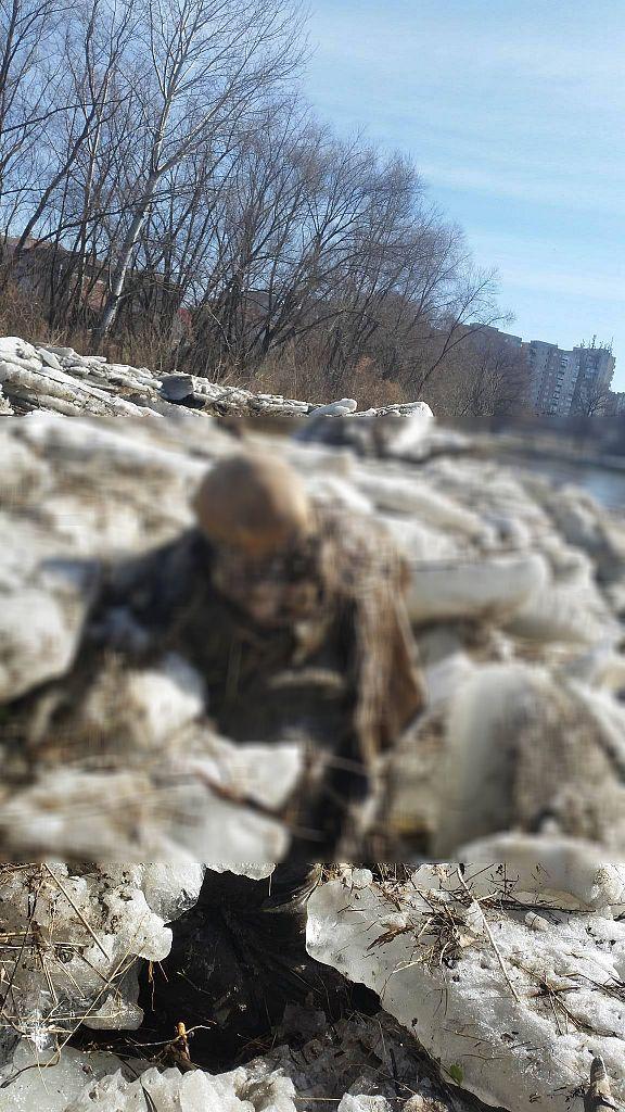 cadavru Olt (4) blur