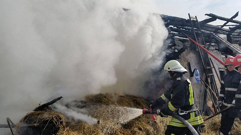 Incendiu Bicfalau2